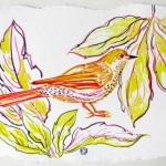 Yellow Songbird in Spring Hazel Jarvis watercolor
