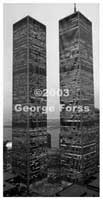George Forss The Towers Stand Alone