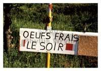 Phyllis Wrynn Oeufs Frais le Soir