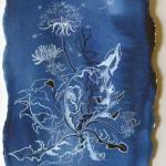 Dandelion Study, Hazel Jarvis, watercolor