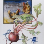 Beet Root, farming, chickens