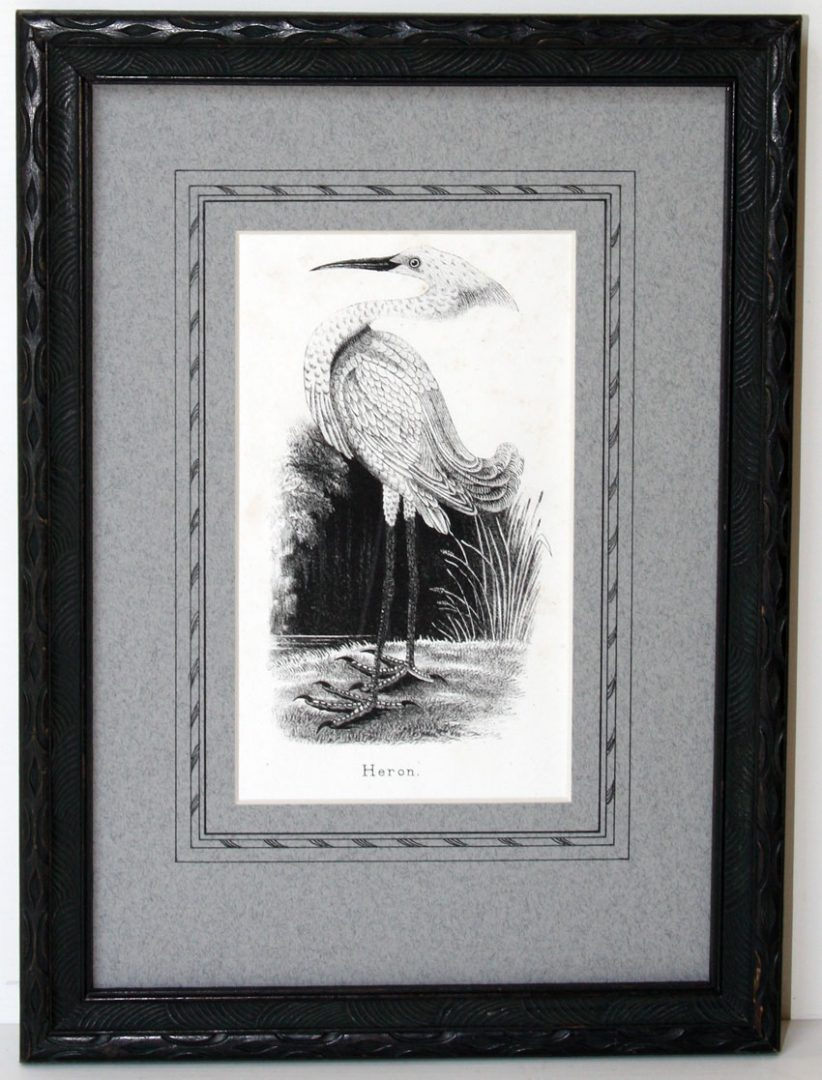 Heron, lithograph; restored antique frame; c.1810