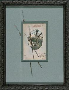 Prospect Park Palette; vintage postcard; c.1906