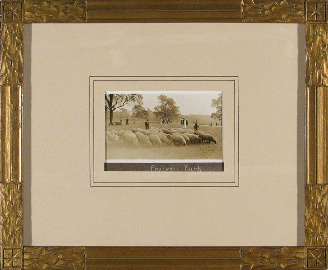 Sheep in Prospect Park; original albumen photograph; restored antique gilt frame; c.1870